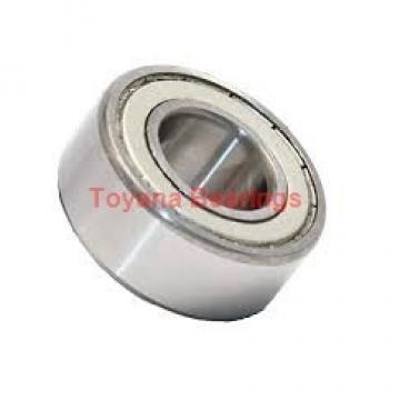 Toyana RNAO40x55x40 cylindrical roller bearings